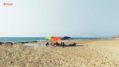 צילייה לים