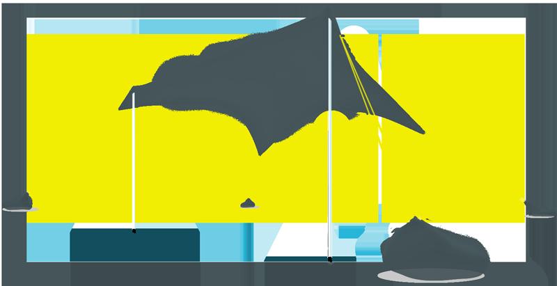 מקורי אותנטיק ביג - Otentik - הצילייה המקורית LT-77